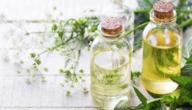 Breaking Down 6 Great Essential Oils